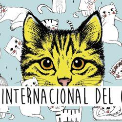El gato es el único animal que celebra su día tres veces al año.