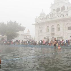 Un devoto sij toma un baño sagrado en el Sarovar (tanque de agua) durante las celebraciones de Basant Panchami en el Santuario Sikh Gurudwara Chheharta Sahib en las afueras de Amritsar. | Foto:Narinder Nanu / AFP