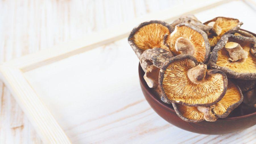 Los hongos deben estar en excelente estado para su consumo. No deben lavarse, sino limpiarlos con un papel o trapo húmedo.