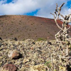 Un sendero trepa por las laderas de la Montaña Colorada en Lazarote. Forma parte de un itinerario didáctico gratuito sobre vulcanismo. Foto: Andreas Drouve/dpa