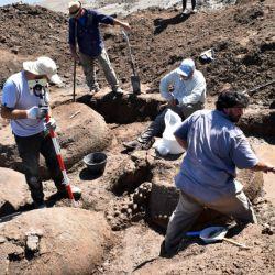Los caparazones de los gliptodontes se dejaron ver producto de la gran sequia que aqueja a la zona.