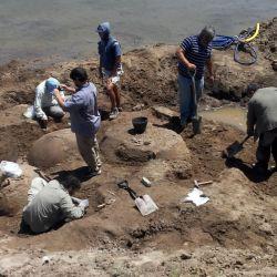 Los restos fósiles de los gliptodontes fueron descubiertos por una afortunado arriero de la zona.
