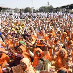 Los agricultores gritan consignas durante una manifestación contra las recientes reformas agrícolas del gobierno central y exigen la liberación de los activistas que fueron arrestados en relación con la violencia en el Fuerte Rojo en Tarn Taran, India. | Foto:AFP