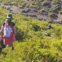 El Parque Arqueológico Colomichicó solo se puede recorrer mediante el trekking.