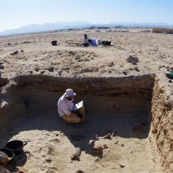 El cementerio de mascotas fue hallado en las cercanías del puerto de Berenice, en Egipto.