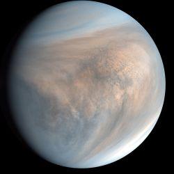 Algunos seres vivos de la Tierra podrían sobrevivir sin problemas en Marte.