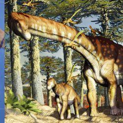 Los nvestigadores bautizaron a esta nueva especie de dinosaurio gigante con el nombre de Ninjatitan zapataí