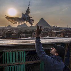 Un hombre suelta una paloma con el telón de fondo de las pirámides de Giza en la capital egipcia, El Cairo | Foto:AFP