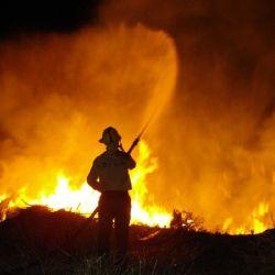 Hasta el momento, Río Negro cuenta con 12.524 hectáreas afectadas por el fuego.