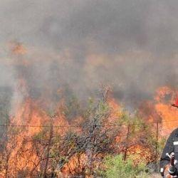 El 95% de los incendios forestales se producen por acción humana
