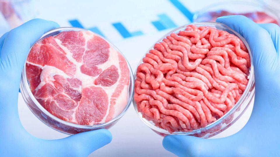 carne sintetica 20210309