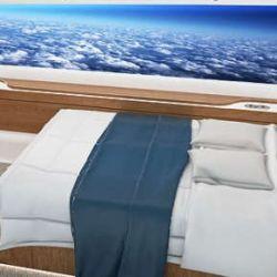 Entre tantas otras curiosidades, el avión no contará con ventanillas.