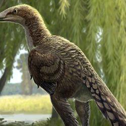 Dinosaurio alado encontrado en España.
