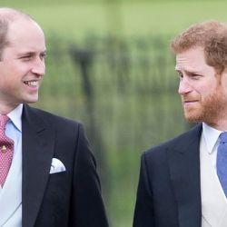 La charla de William y Harry.