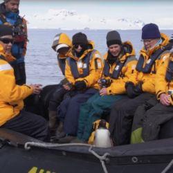 El pingüino papúa logró escapar de las orcas asesinas al saltar dentro de un bote de turistas..