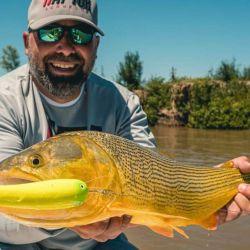 Los dorados se pescaron en zonas turbulentas con piedras y correderas.
