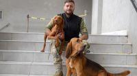 Perros al rescate: cómo se los entrena para rastrear personas