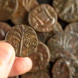 También encontraron varias monedas de los días de la desafortunada revuelta de Bar Kojba.