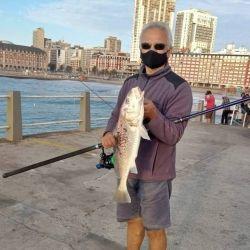 Dónde ir por buena pesca el fin de semana del 20 de marzo