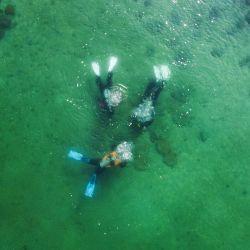Los buzos científicos marinos de la Facultad de Ciencias Biológicas de la Universidad de Hong Kong (HKU) nadan sobre baldosas de arcilla impresas en 3D, diseñadas para funcionar como un lecho artificial para los corales en las aguas de Hoi. Parque marino de Ha Wan en Hong Kong. | Foto:Anthony Wallace / AFP