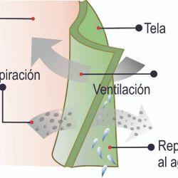 Camisas técnicas para proteger la piel de los agentes externos en el ourdoors.