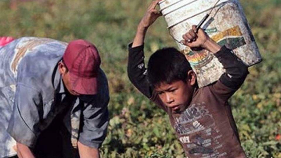Trabajo rural infantil