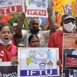 Activistas y simpatizantes de varias organizaciones de bienestar social participan en una manifestación para mostrar su apoyo a la huelga nacional convocada por agricultores que continúan protestando contra las recientes reformas agrícolas del gobierno central en Hyderabad. | Foto:Noah Seelam / AFP
