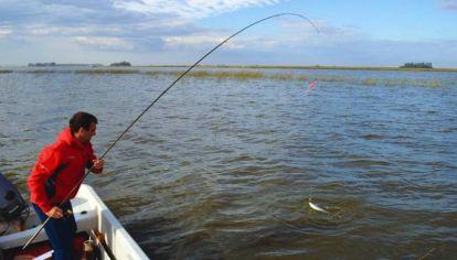 Con una pesca de calidad y cantidad en todo el ámbito, lo más rendidor es realizarla a flote con brazoladas muy cortas.