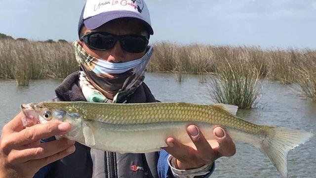 Pesca: se viene un fin de semana a todo pique
