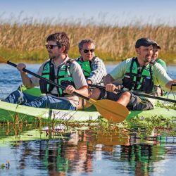 Los kayaks, otra manera de estar en pleno contacto con ellas.