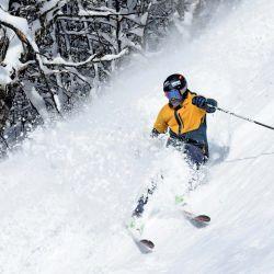 Esta puesta toda la expectativa en la próxima temporada de ski.