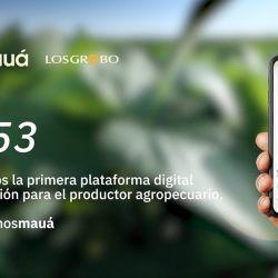 App Mauá | Foto:Gentileza Los Grobo