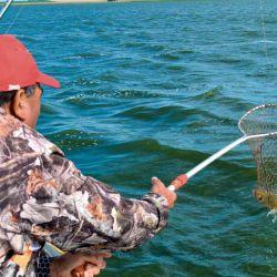 El uso del copo es imprescindible para asegurar la captura.