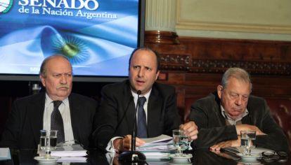 Mariano Borinsky presenta el Código Procesal Penal en el Senado (Archivo)