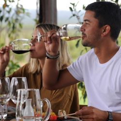 Tourists taste wine as they have lunch at the Pulenta Estate winery in Agrelo, Luján de Cuyo.