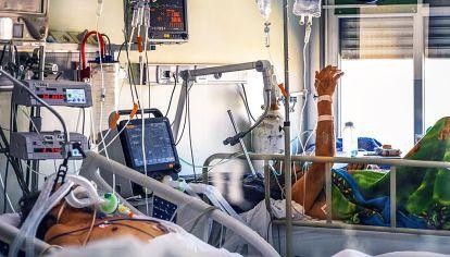 Resultados. Los tratamientos usando anticuerpos monoclonales podrían bajar los casos mortales.