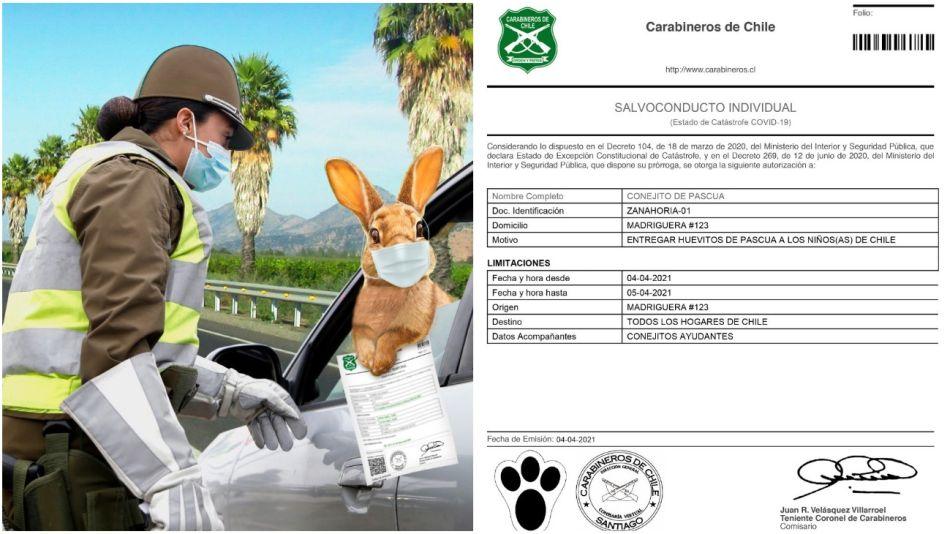 Afortunadamente, el Conejo recibió un permiso de circulación especial.