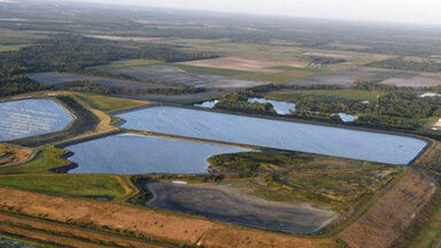 desastre ambiental en Florida  20210405