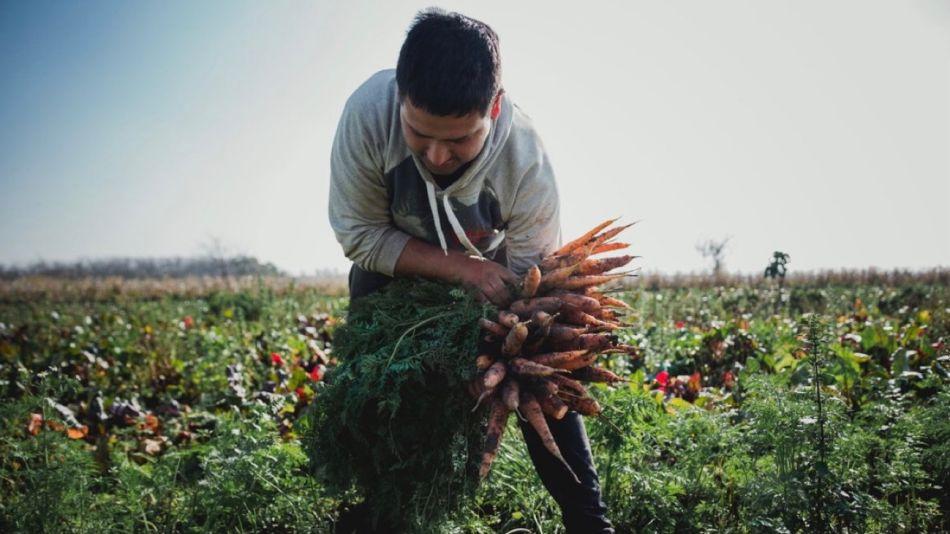 Unión de Trabajadores de la Tierra