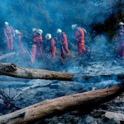 Un equipo de bomberos presos trabaja para contener el incendio de Springs mientras arde a lo largo de una ladera en el Bosque Nacional Ángeles en Valyermo, California. | Foto:Kyle Grillot / AFP