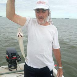 La pesca se realizó embarcado, encarnando con mojarra y también rindió el filete de dientudo.