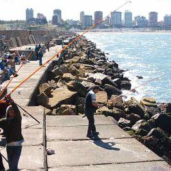 El fondo marino alejado de la costa generalmente es de arena o arena y barro.