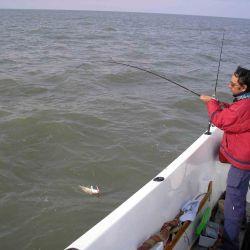En zonas de mucha presencia de pescadores se han construido muelles para facilitar el ingreso de las líneas al mar.