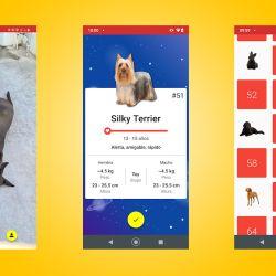 La aplicación se descarga de manera gratuita desde Google Play.