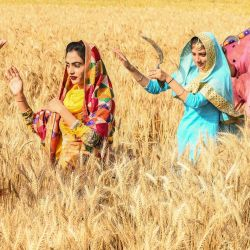 Los jóvenes sij realizan la danza folclórica tradicional de Punjab  | Foto:Narinder Nanu / AFP