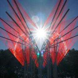 Para su realización, el artista utilizó 15 km de tanza de poliamida (la que se usa para bordeadoras).