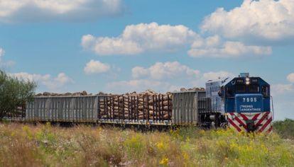 El movimiento de cargas por ferrocarril sigue creciendo.