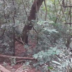 Al momento de ser detenido, el cazador furtivo se encontraba sentado en un sobrado, a la espera de su víctima.