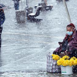 Una mujer vende narcisos al costado de la carretera durante las fuertes nevadas. | Foto:Ukrinform / DPA