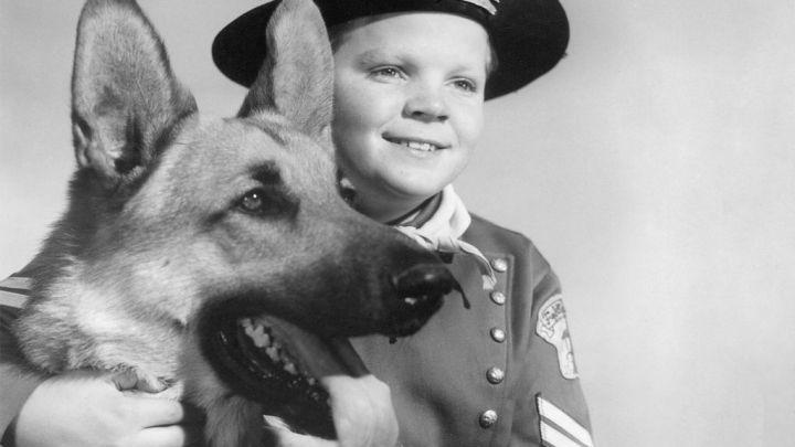Murió Lee Aaker, la estrella infantil de Rin Tin Tin